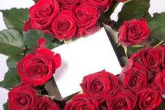 Rosas e cartão em branco Fotos de Stock Royalty Free