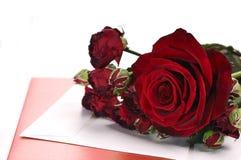 Rosas e cartão vermelhos Imagens de Stock