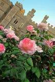 Rosas e castelo do verão Fotos de Stock Royalty Free