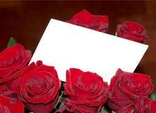 Rosas e copyspace Fotografia de Stock Royalty Free