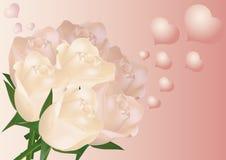 Rosas e corações Imagem de Stock