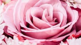 Rosas e Daisy Flowers Wedding Bouquet cor-de-rosa imagem de stock