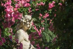 Rosas e estátua dos deuses no jardim de rosas Beutig em Baden-Baden Fotografia de Stock Royalty Free
