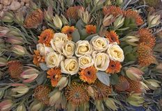 Rosas e flores selvagens Fotos de Stock
