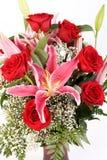 Rosas e Gazer da estrela Fotos de Stock Royalty Free