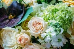 Rosas e Gerbera cor-de-rosa Daisy Flowers Wedding Bouquet fotografia de stock