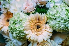 Rosas e Gerbera cor-de-rosa Daisy Flowers Wedding Bouquet fotos de stock royalty free