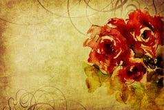 Rosas e ornamento da aquarela no papel velho Fotos de Stock