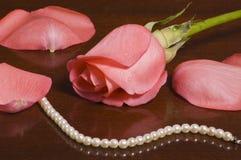 Rosas e Peals Imagens de Stock Royalty Free