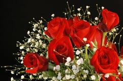 Rosas e respiração vermelhas dos bebês Fotografia de Stock Royalty Free