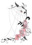 Rosas e spiderweb Imagem de Stock