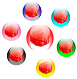 Rosas em esferas de vidro coloridas Foto de Stock Royalty Free