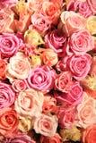Rosas em máscaras diferentes do rosa, arranjo do casamento Fotos de Stock Royalty Free