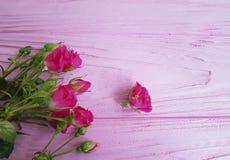 rosas em um feriado de madeira do fundo do vintage do aniversário bonito cor-de-rosa da decoração do cumprimento imagens de stock royalty free