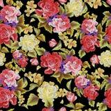 Rosas em um teste padrão sem emenda do fundo preto Fotos de Stock Royalty Free