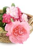 Rosas em uma cesta Fotos de Stock Royalty Free