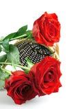 Rosas em uma cesta Imagens de Stock Royalty Free