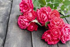 Rosas em uma placa de madeira velha Flores?a o frame imagem de stock