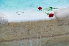 Rosas en agua Fotografía de archivo