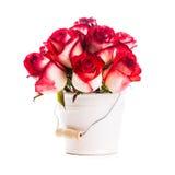 Rosas en el cubo fotografía de archivo