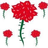 Rosas en el fondo aislado Imágenes de archivo libres de regalías