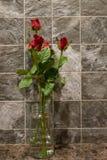 Rosas en florero , Día de tarjetas del día de San Valentín Imágenes de archivo libres de regalías