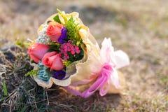 Rosas en hierba Imágenes de archivo libres de regalías
