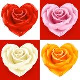 Rosas en la dimensión de una variable del corazón Imágenes de archivo libres de regalías
