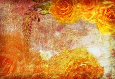 Rosas en la vieja textura del grunge imagen de archivo libre de regalías