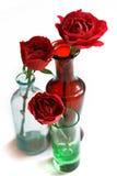Rosas en los floreros de cristal Fotografía de archivo