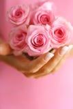 Rosas en manos Foto de archivo libre de regalías