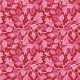 Rosas en modelo inconsútil floral de la floración Foto de archivo libre de regalías