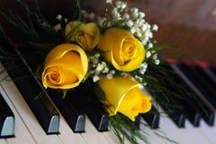Rosas en piano Imagen de archivo libre de regalías