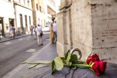 Rosas en Roma fotografía de archivo