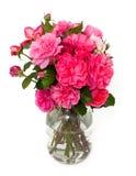 Rosas en tarro foto de archivo libre de regalías
