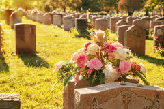 Rosas en un cementerio Imagen de archivo libre de regalías