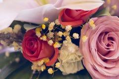 Rosas en un cierre para arriba Foto de archivo libre de regalías