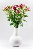 Rosas en un florero Imágenes de archivo libres de regalías