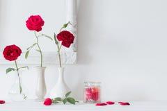 rosas en un florero en la pared del blanco del fondo Imagenes de archivo