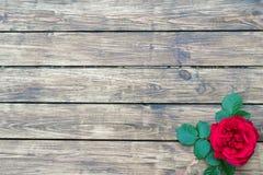 Rosas en un fondo de madera Imagen de archivo
