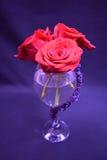 Rosas en un vidrio de la rosa Imagenes de archivo