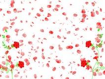 Rosas, flores, e pétalas fotografia de stock