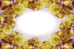 rosas Flores Use materiais impressos, sinais, artigos, Web site, mapas, cartazes, cartão, empacotando Cartão com a palavra - Fotografia de Stock