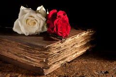 Rosas frescas en el libro viejo imagen de archivo libre de regalías