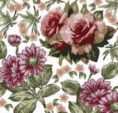 Rosas. Fundo bonito com um orname da flor Imagens de Stock