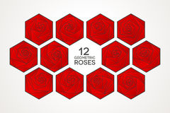 12 rosas geométricas originais ajustadas Imagem de Stock Royalty Free
