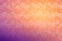Rosas hechas de fondo del extracto de la tela Fotografía de archivo