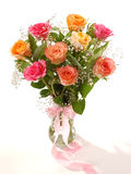 Rosas hermosas Imagen de archivo