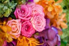 Rosas hermosas como fondo Fotos de archivo