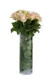 Rosas hermosas en blanco Fotografía de archivo libre de regalías